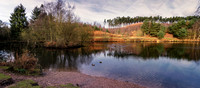 Fishing Pool, Birches Valley, Cannock Chase